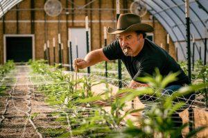Jim Belushi The Green Solution