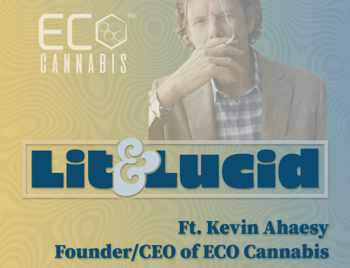 E.125 – Creating Opportunities in Cannabis for the Formerly Incarcerated Ft. Kevin Ahaesy CEO of ECO Cannabis